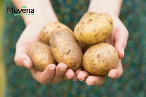 Trị nám da mặt tại nhà bằng khoai tây